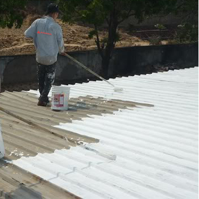 Roof painting copy